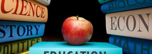 Currículo para o dossiê de candidatura numa universidade francesa